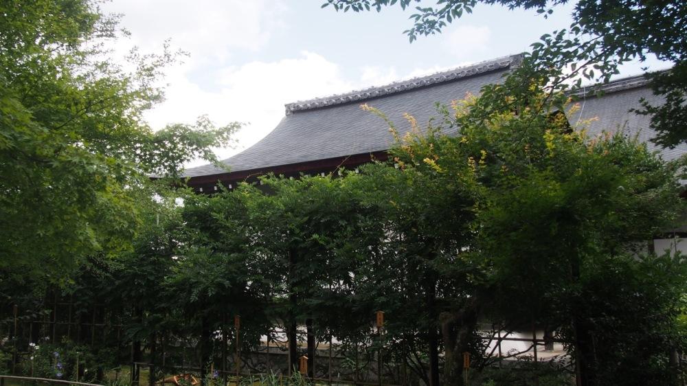 Tenryu-Ji Temple Gardens